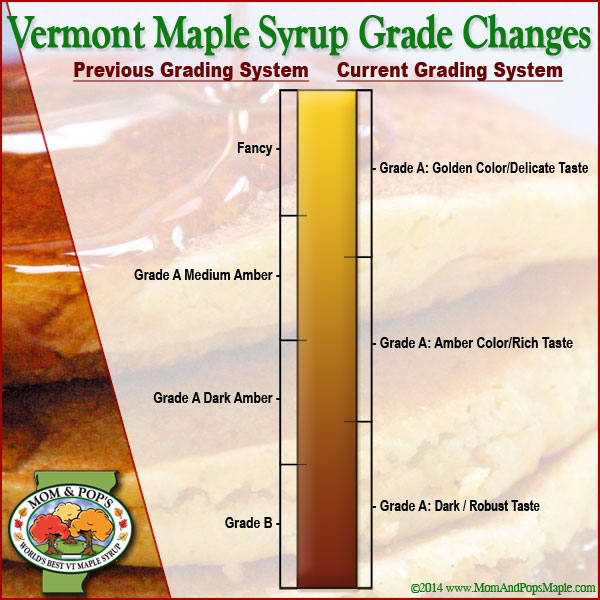A photo of the four grades of maple syrup